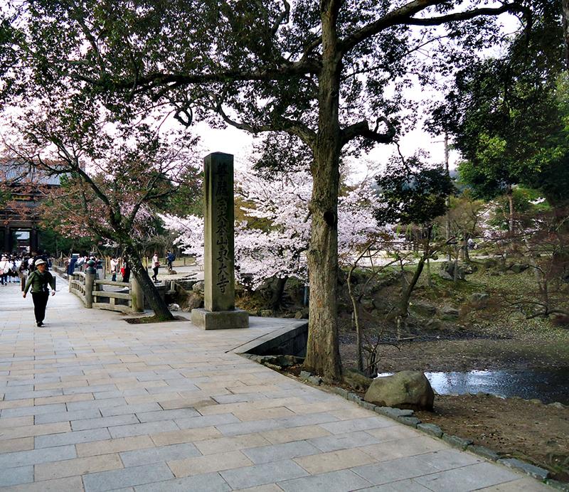 Mais do parque de Nara