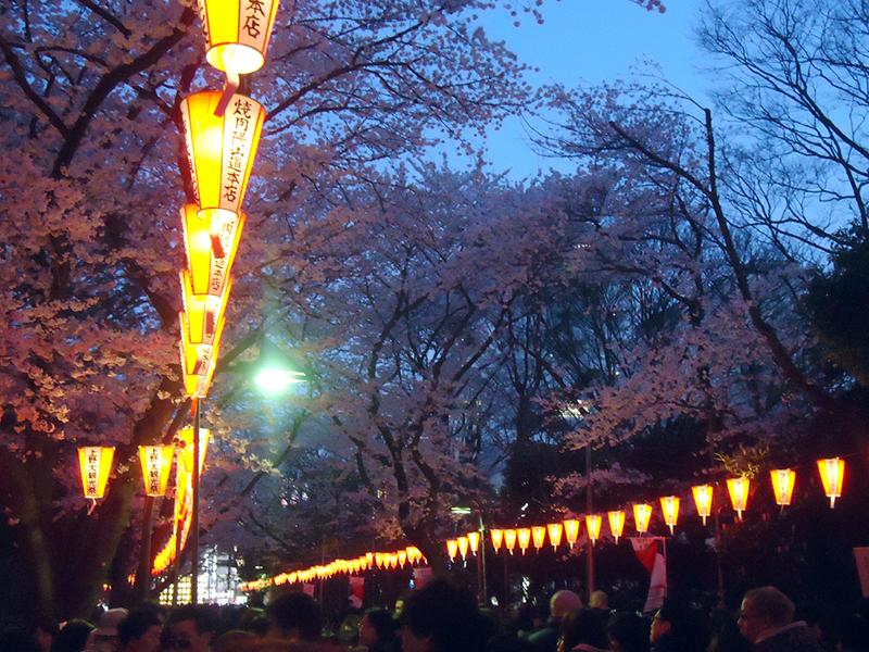 anoitecendo no parque ueno