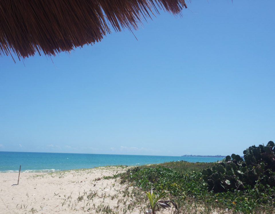 3 praias lindas para conhecer em Maceió