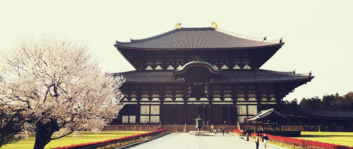 11 coisas que você precisa saber antes de viajar para o japão
