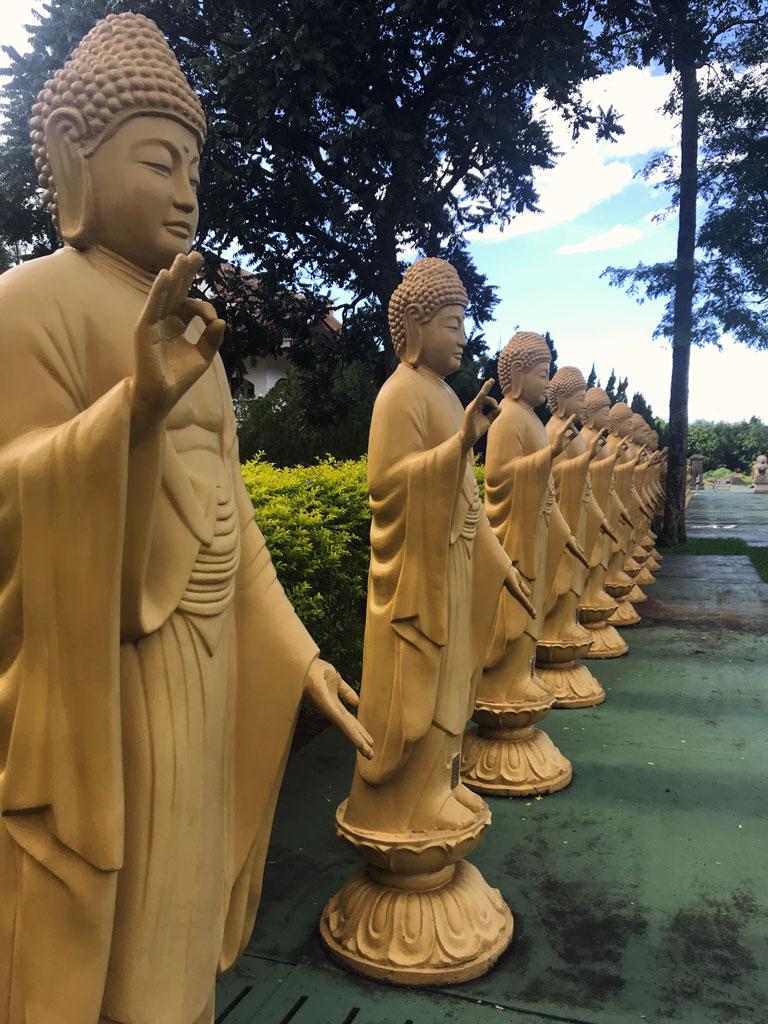 Estátuas de buda em meditação